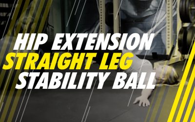 Hip Extension – Straight Leg – Stability Ball