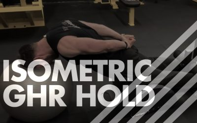 Isometric GHR Hold – Head Supported on Swiss Ball in Modified Chinese Plank