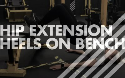 Hip Extension – Heels on Bench